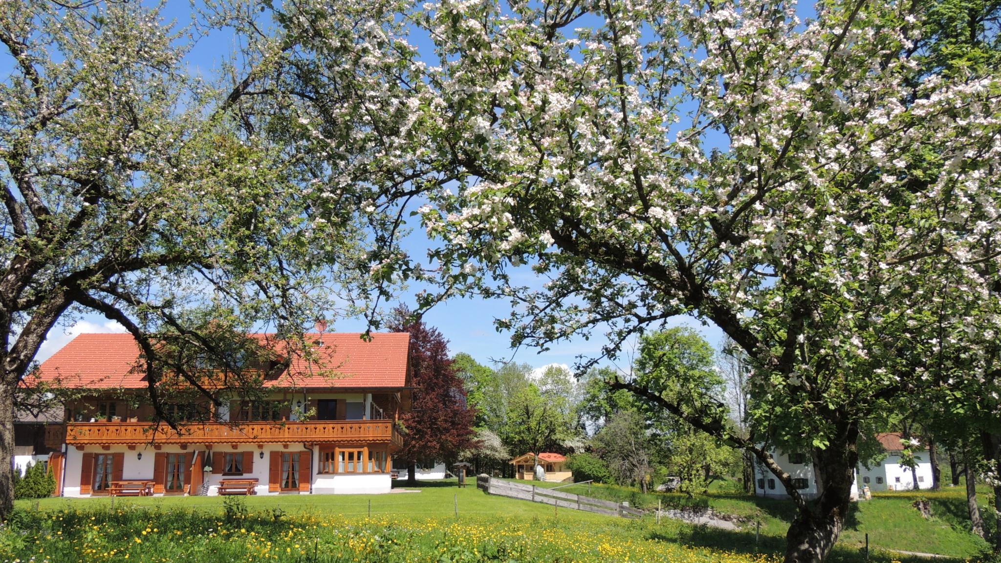 Frühling in Lenggries-Wegscheid